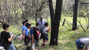 Grad student teaches 5th graders to core trees