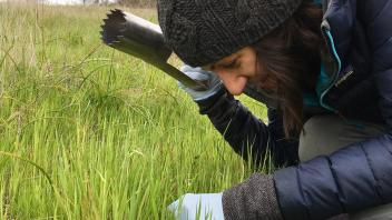 Marina LaForgia sampling soil